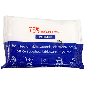 Disinfectant Wipes 10 Pack