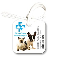 Bag & Luggage Tag   Small Square Id   Full Color
