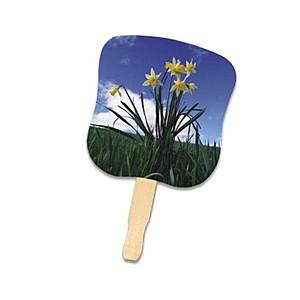 Stock Design Hand Fan Daffodils