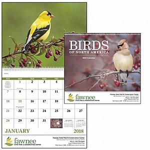 Birds Of North America Spiral Calendar