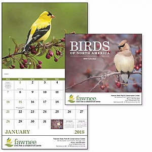 Birds Of North America Stapled Calendar