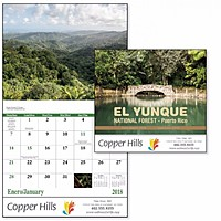 El Yunque National Forest Stapled