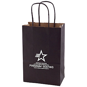 Solid Tinted Kraft Shopping Bags 5.5 X 3.25 X 8.375