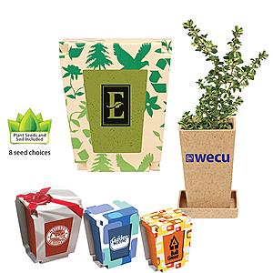 Promo Planter, 1 Pack Planter