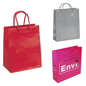 Reusable Gloss Laminated Paper Gift Bag