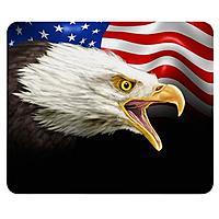 Stock USA Eagle