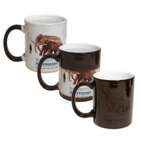 11 Oz Color Changing Mug (Black)