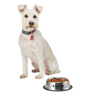 Medium Stainless Steel Pet Bowl